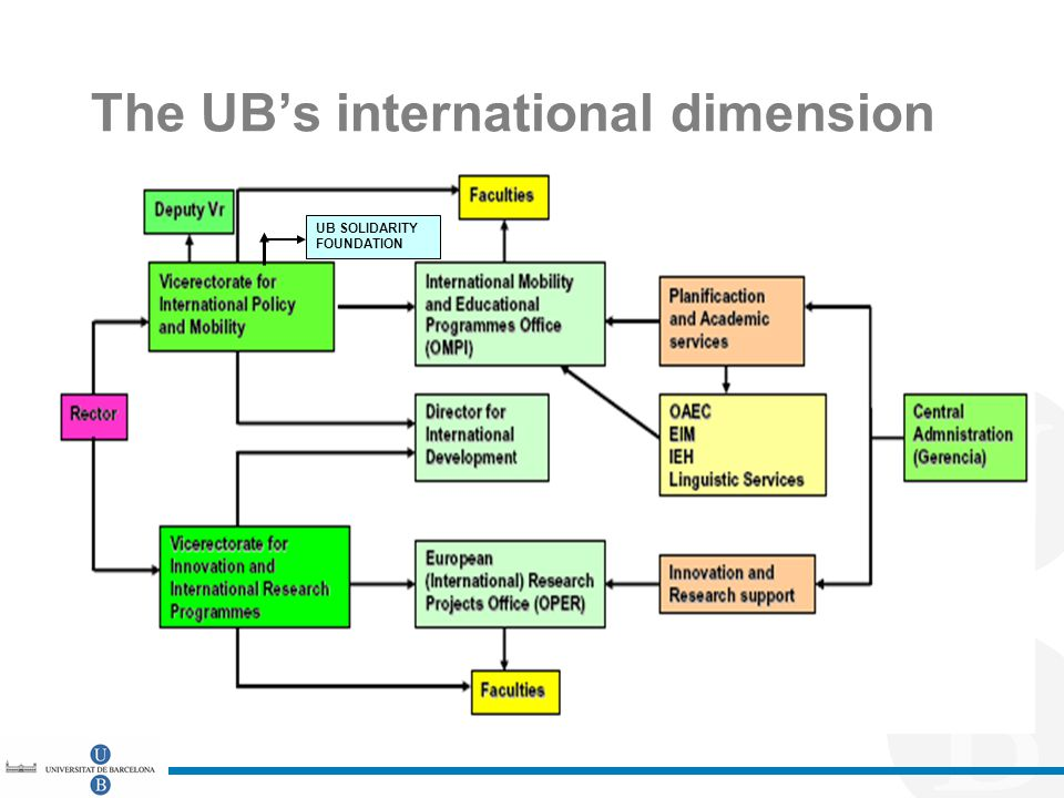 The UB's international dimension UB SOLIDARITY FOUNDATION