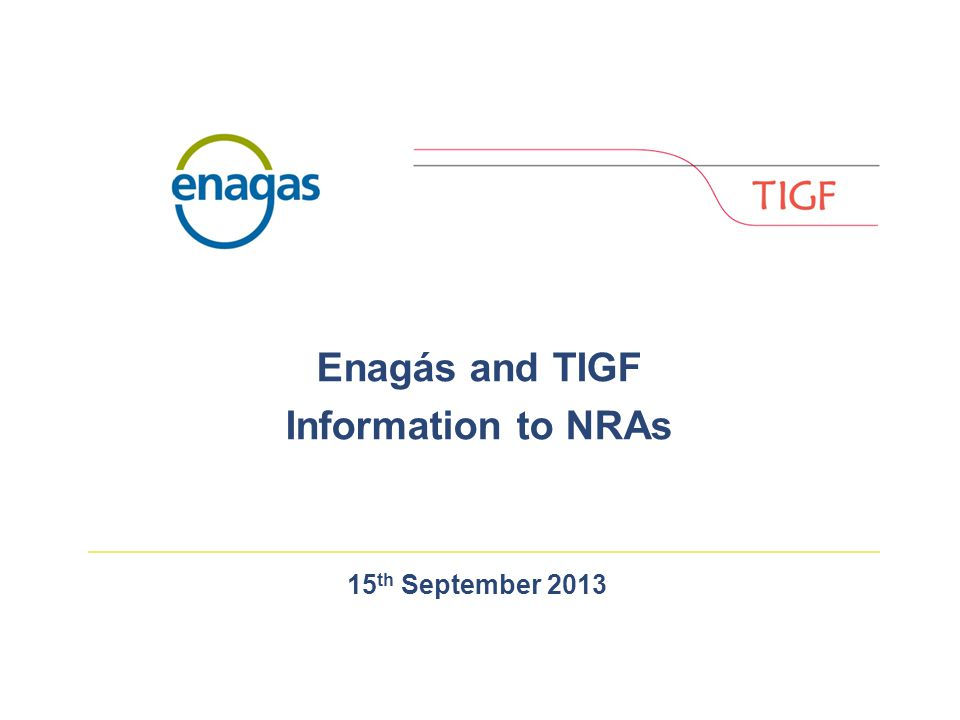 15 th September 2013 Enagás and TIGF Information to NRAs