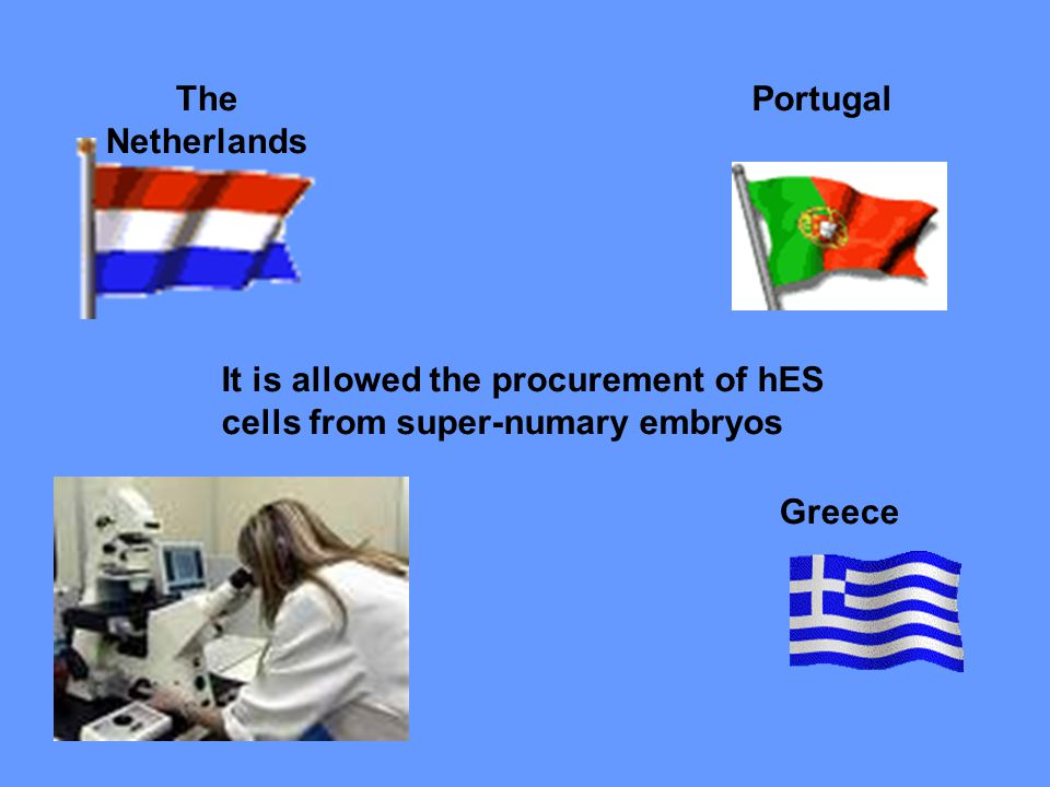 It is allowed the procurement of hES cells from super-numary embryos The Netherlands Portugal Greece