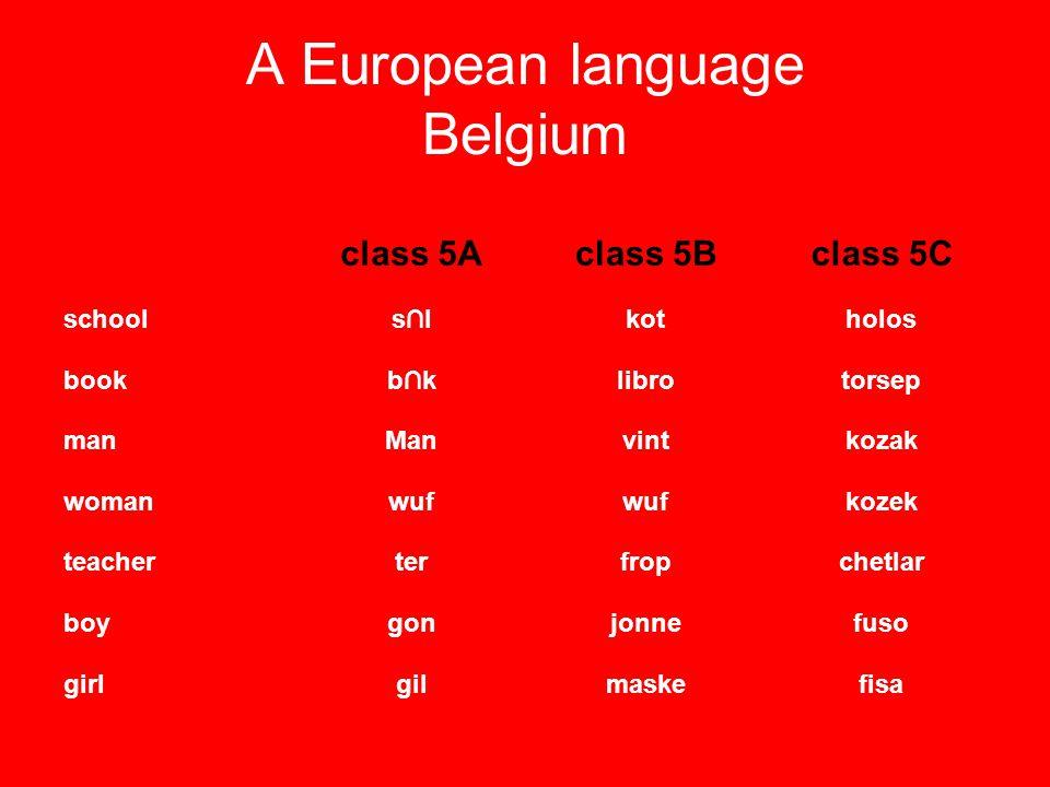 A European language Belgium class 5Aclass 5Bclass 5C schools∩lkotholos bookb∩klibrotorsep manManvintkozak womanwuf kozek teacherterfropchetlar boygonj