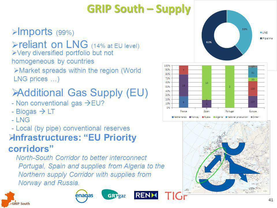 GRIP South 40 GRIP South – Demand ANALYSES (2012) & FORECASTS Demand forecasts:  Updated: yearly volumes, peak days and cold period  Analyzed: -By sectors (power gen.) -Evolution / TYNDP
