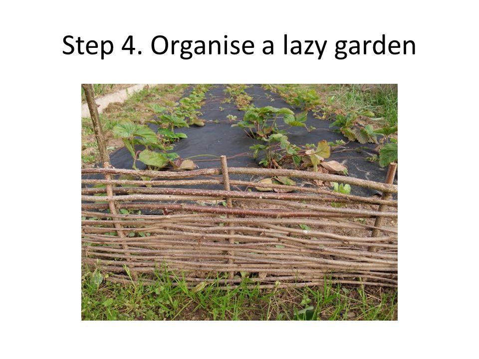 Step 4. Organise a lazy garden