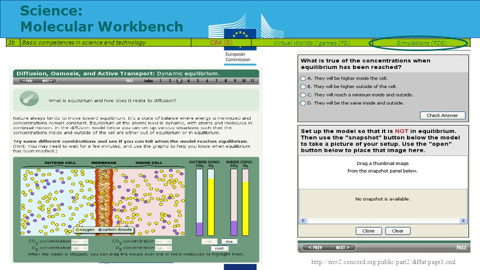 Science: Molecular Workbench 3bBasic competences in science and technologyCBA (S)Virtual Worlds / games (FS)Simulations (FDS) http://mw2.concord.org/public/part2/diffat/page3.cml