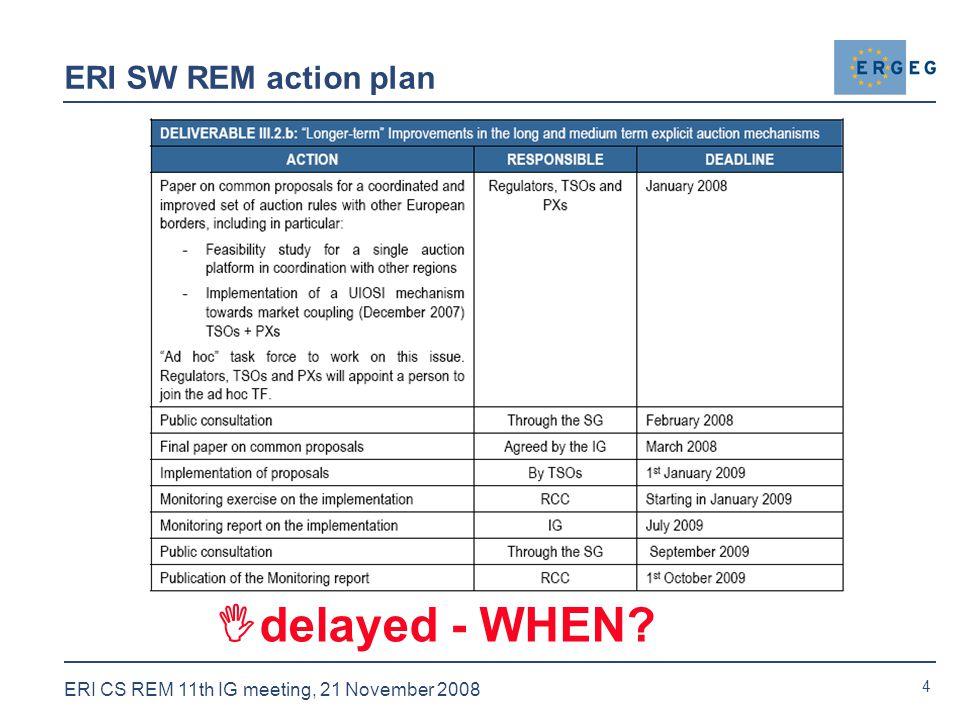 4 ERI CS REM 11th IG meeting, 21 November 2008 ERI SW REM action plan  delayed - WHEN
