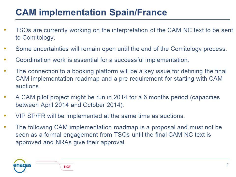 Madrid, 19 th November 2012 Roadmap implementation CAM 20 th IG meeting