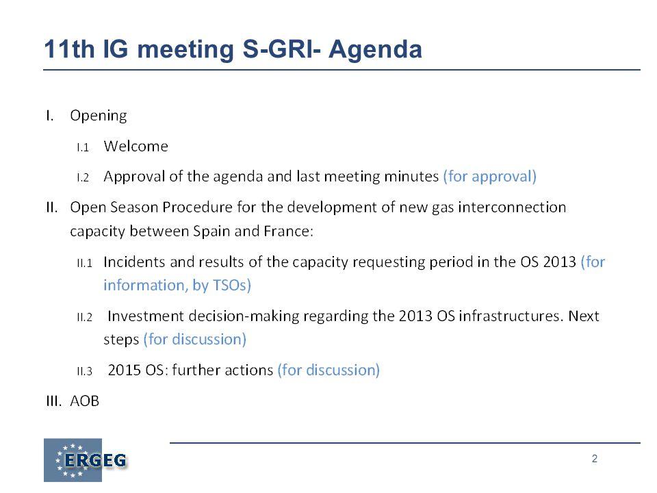 2 11th IG meeting S-GRI- Agenda