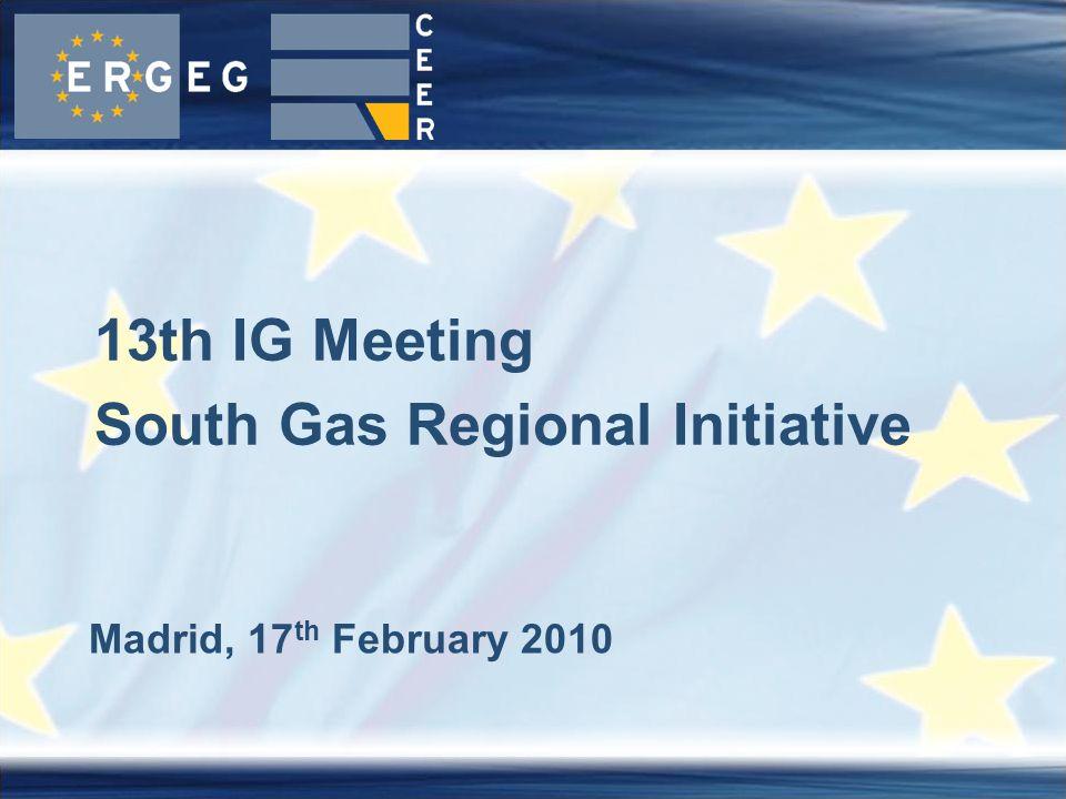 Madrid, 17 th February 2010 13th IG Meeting South Gas Regional Initiative