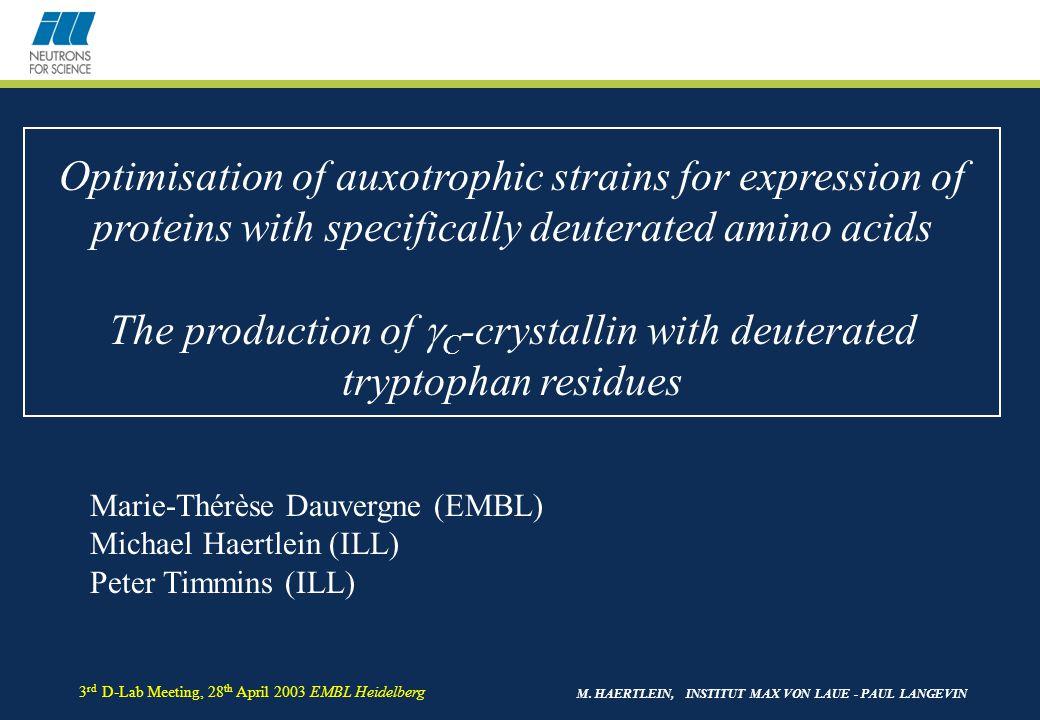 M. HAERTLEIN, INSTITUT MAX VON LAUE - PAUL LANGEVIN 3 rd D-Lab Meeting, 28 th April 2003 EMBL Heidelberg Optimisation of auxotrophic strains for expre