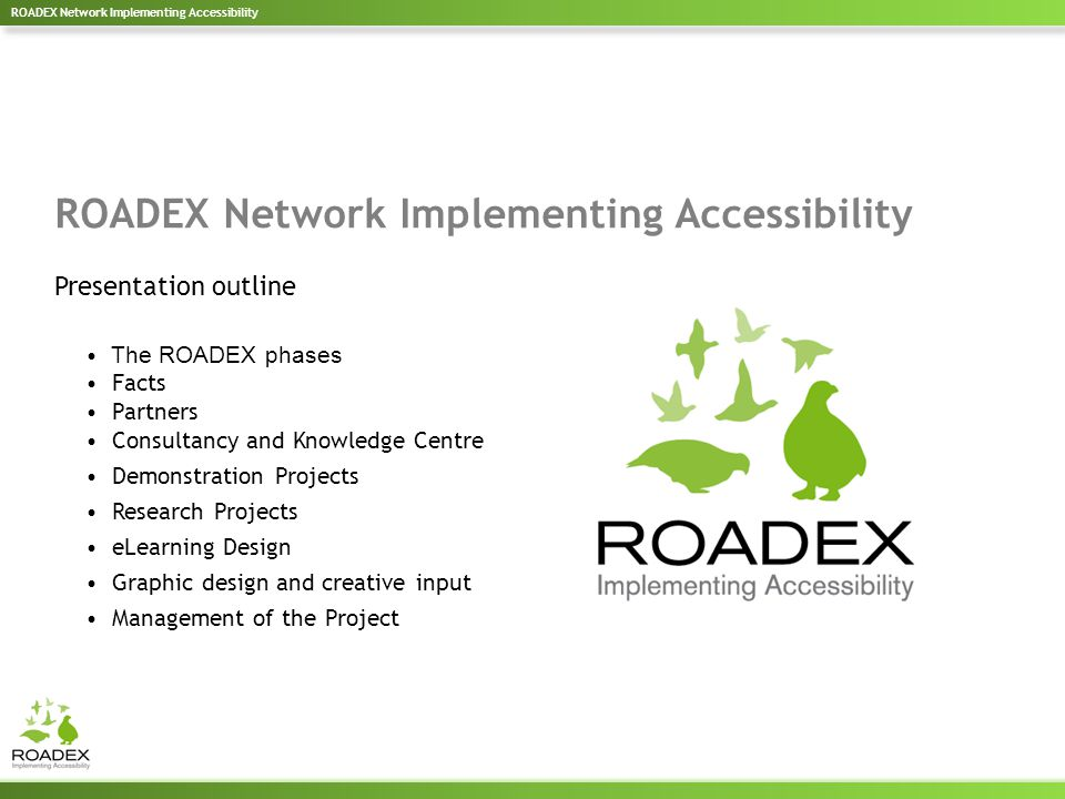 The ROADEX phases Facts Partners Consultancy and Knowledge Centre Demonstration Projects Research Projects eLearning Design Graphic design and creative input Management of the Project ROADEX Network Implementing Accessibility Presentation outline