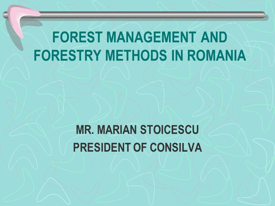 PRIVATE OWNERS In Romania there are about 500,000 individual forest- owners and most of them are not rich people; they own 1 or 2 ha of forest and they need to be supported by the state budget for their forestry work otherwise there is the danger of disappearing the forests.