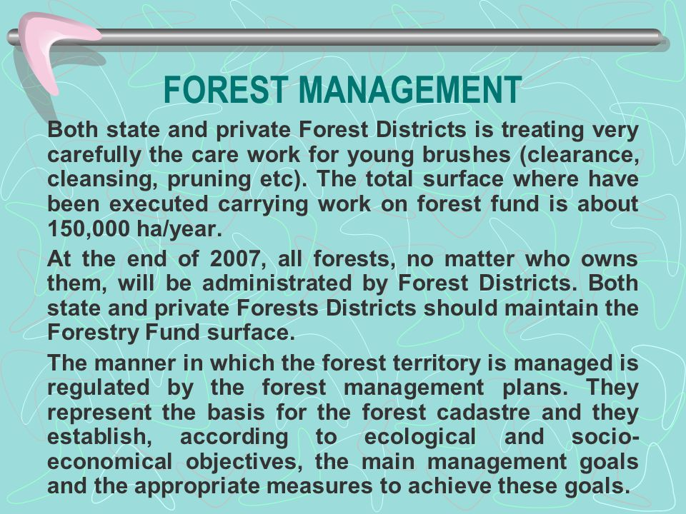FOREST MANAGEMENT Both state and private Forest Districts is treating very carefully the care work for young brushes (clearance, cleansing, pruning et