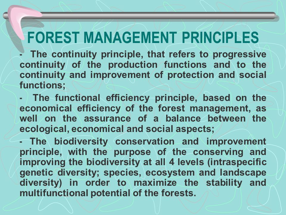 FOREST MANAGEMENT PRINCIPLES - The continuity principle, that refers to progressive continuity of the production functions and to the continuity and i