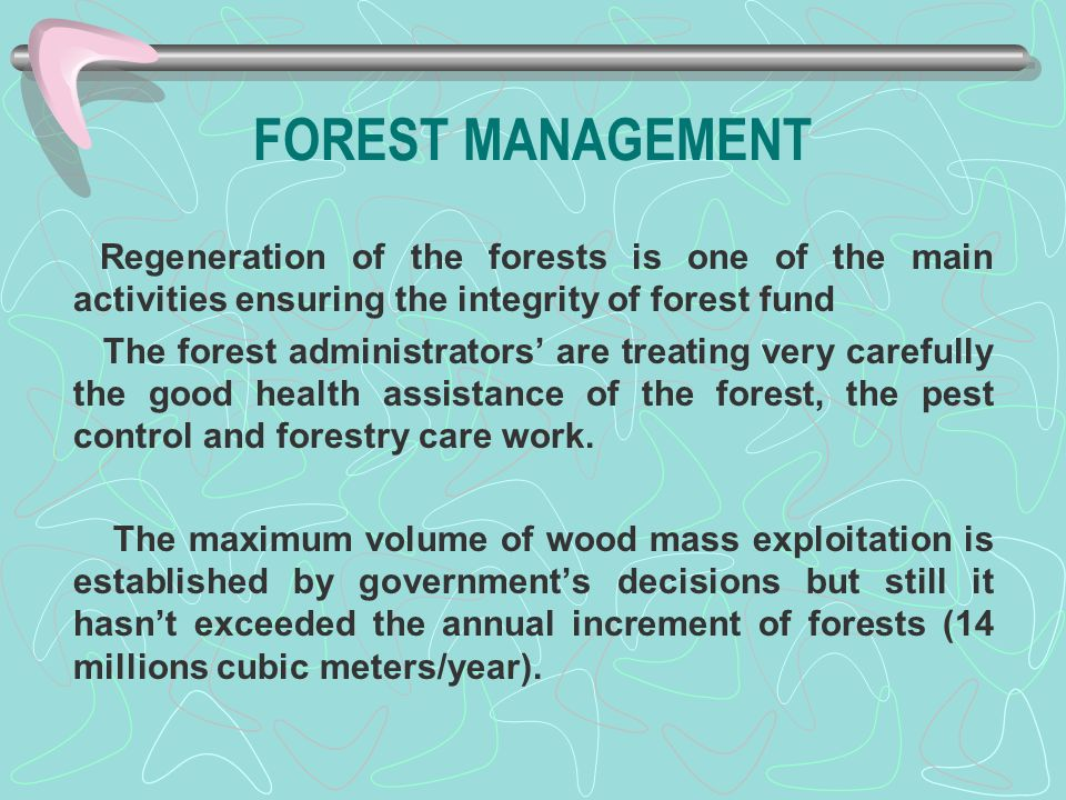 FOREST MANAGEMENT Regeneration of the forests is one of the main activities ensuring the integrity of forest fund The forest administrators' are treat