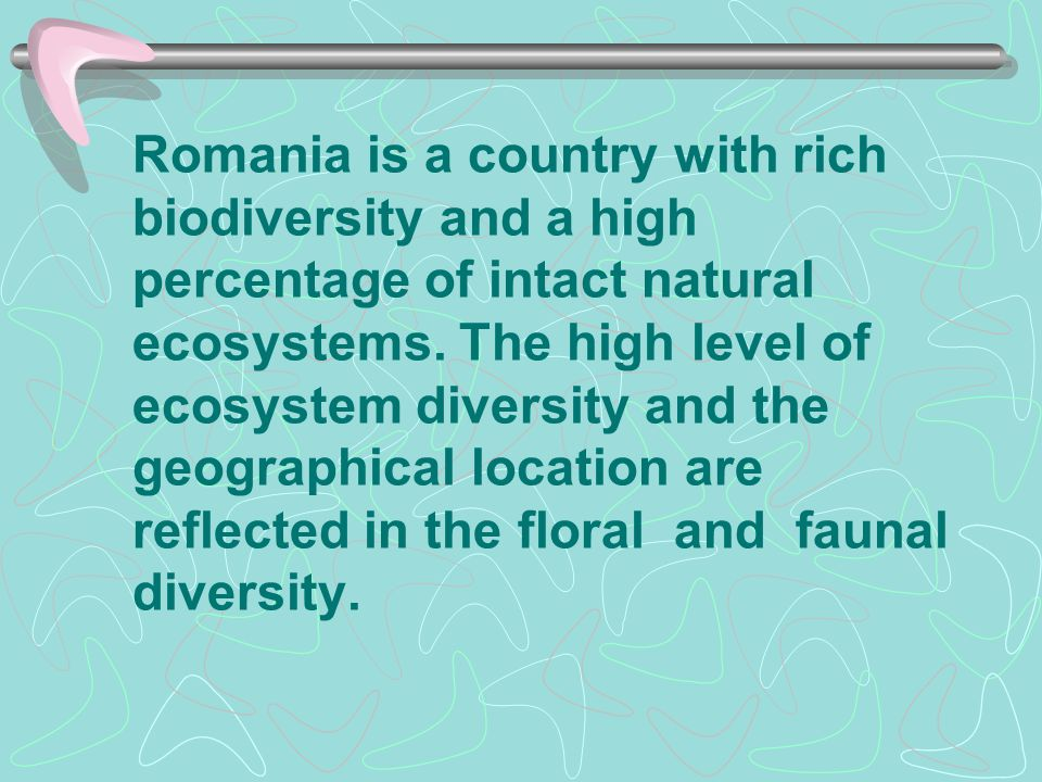 Romania is a country with rich biodiversity and a high percentage of intact natural ecosystems. The high level of ecosystem diversity and the geograph
