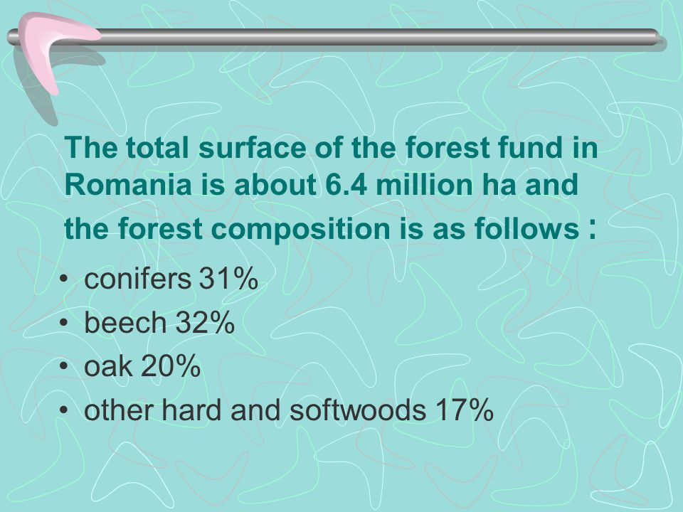 The total surface of the forest fund in Romania is about 6.4 million ha and the forest composition is as follows : conifers 31% beech 32% oak 20% othe