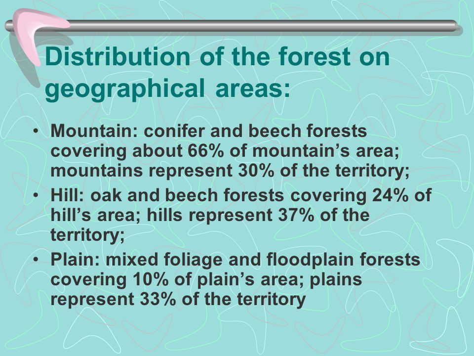 FOREST MANAGEMENT Regeneration of the forests is one of the main activities ensuring the integrity of forest fund The forest administrators' are treating very carefully the good health assistance of the forest, the pest control and forestry care work.
