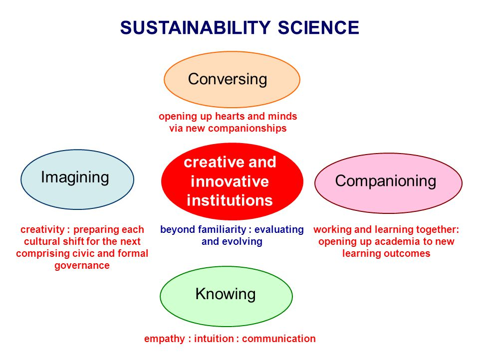 SUSTAINABILITY SCIENCE Conversing opening up hearts and minds via new companionships Companioning working and learning together: opening up academia t