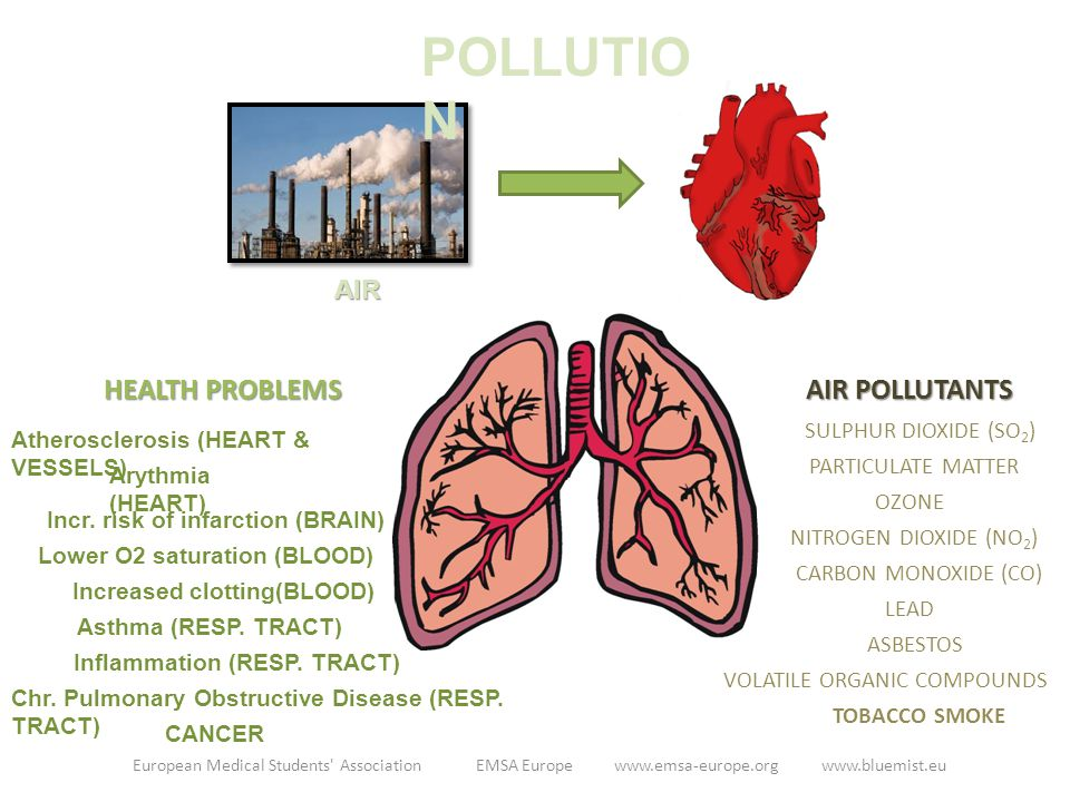 AIR AIR POLLUTANTS HEALTH PROBLEMS Chr. Pulmonary Obstructive Disease (RESP. TRACT) Incr. risk of infarction (BRAIN) Lower O2 saturation (BLOOD) Incre