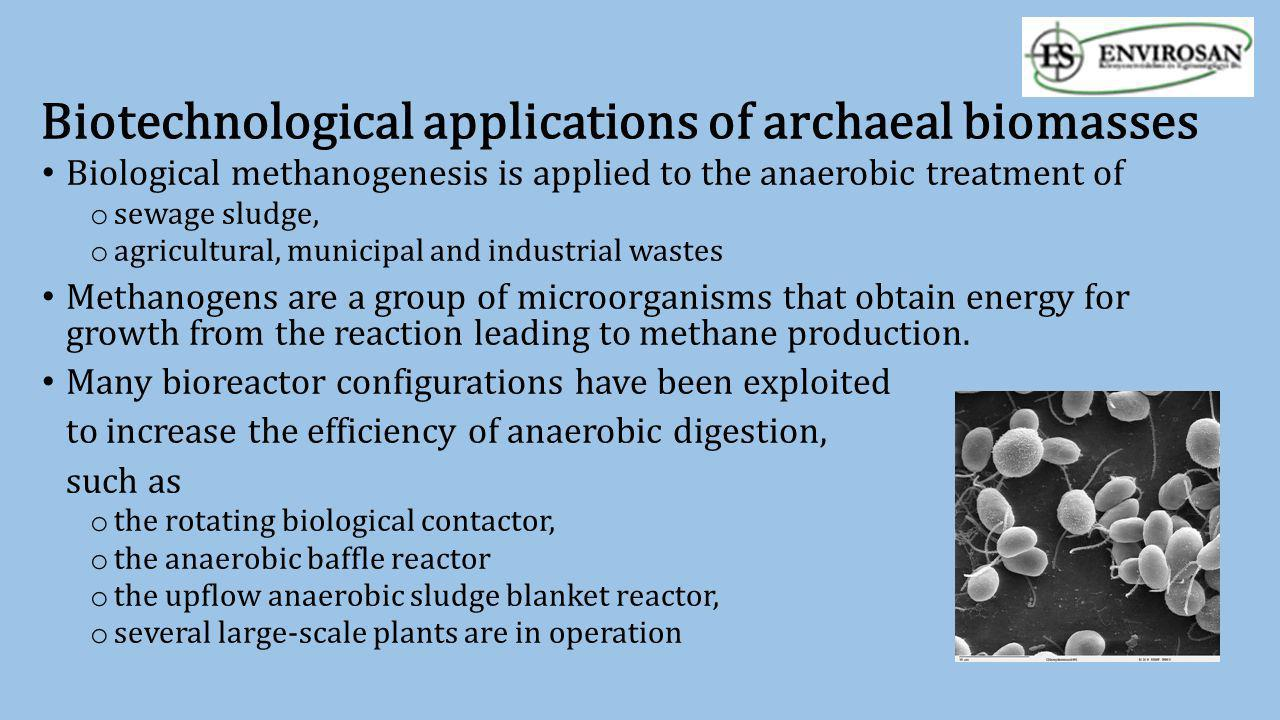Biotechnological applications of archaeal biomasses Biological methanogenesis is applied to the anaerobic treatment of o sewage sludge, o agricultural