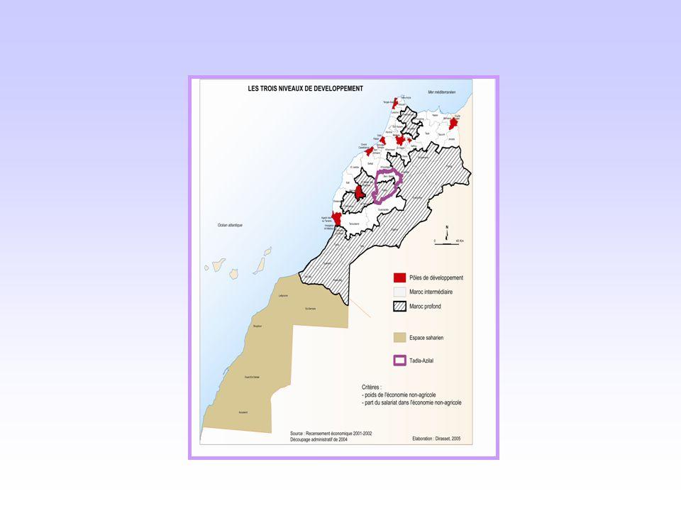 Regions of origin of Undocumented Moroccans arrested in Spain in Spring 2001 (n=3,832)