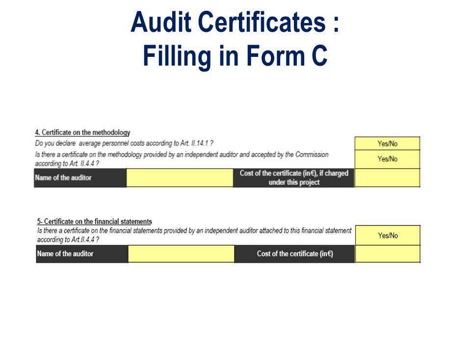 Audit Certificates : Filling in Form C