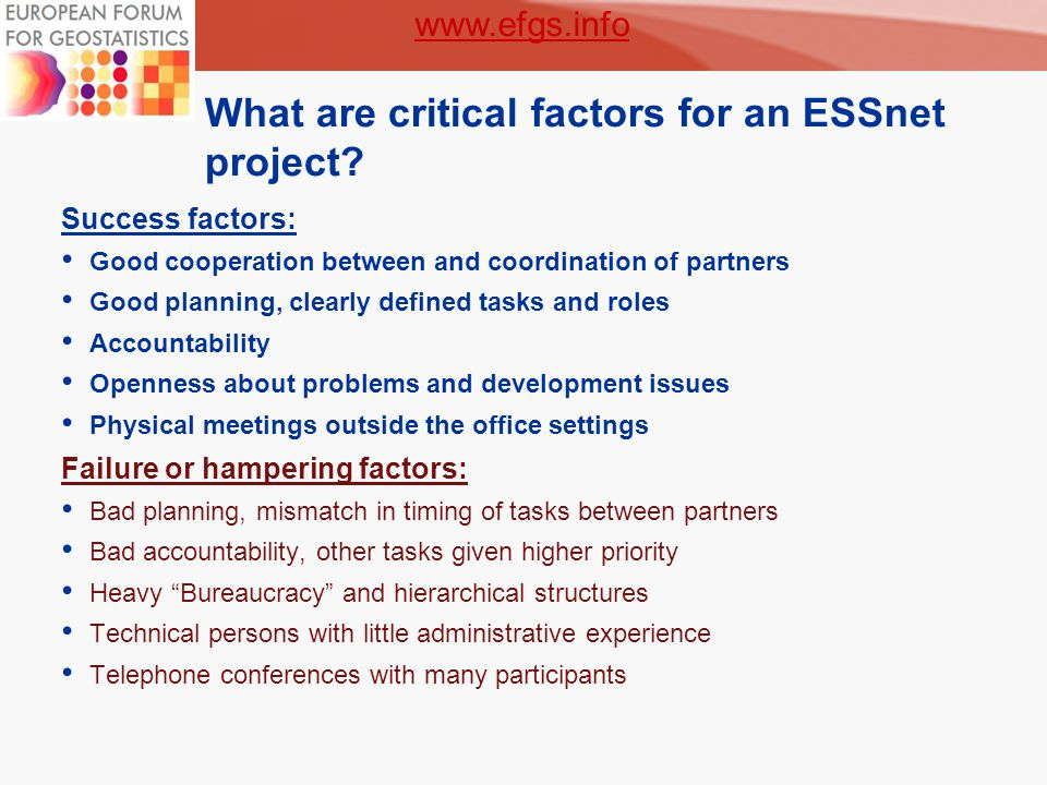 7 What are critical factors for an ESSnet project.