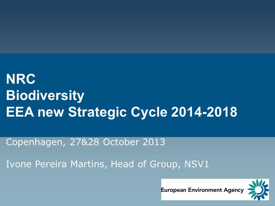 NRC Biodiversity EEA new Strategic Cycle 2014-2018 Copenhagen, 27&28 October 2013 Ivone Pereira Martins, Head of Group, NSV1