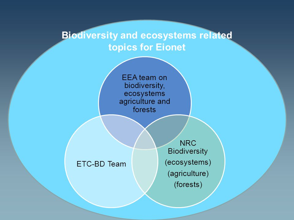 Biodiversity and ecosystems related topics for Eionet EEA team on biodiversity, ecosystems agriculture and forests NRC Biodiversity (ecosystems) (agriculture) (forests) ETC-BD Team