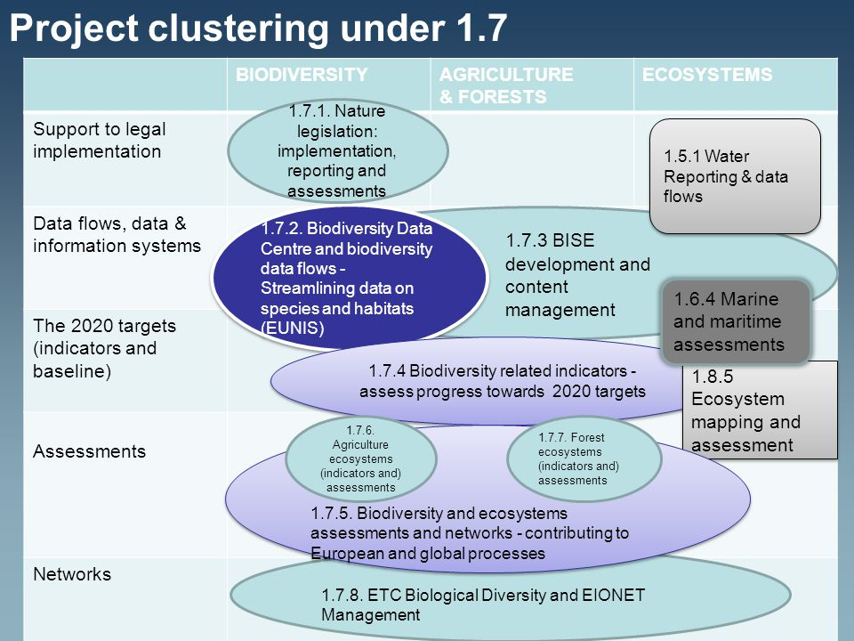 Project clustering under 1.7 BIODIVERSITYAGRICULTURE & FORESTS ECOSYSTEMS Support to legal implementation Data flows, data & information systems The 2020 targets (indicators and baseline) Assessments Networks 1.7.3 BISE development and content management 1.7.2.