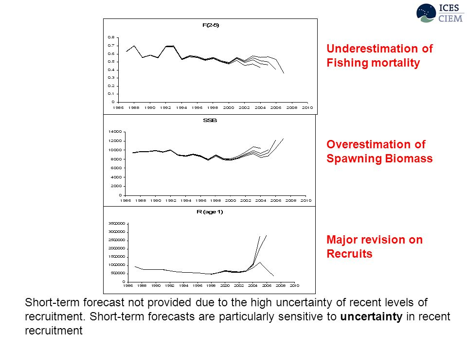 Underestimation of Fishing mortality Overestimation of Spawning Biomass Major revision on Recruits Short-term forecast not provided due to the high uncertainty of recent levels of recruitment.