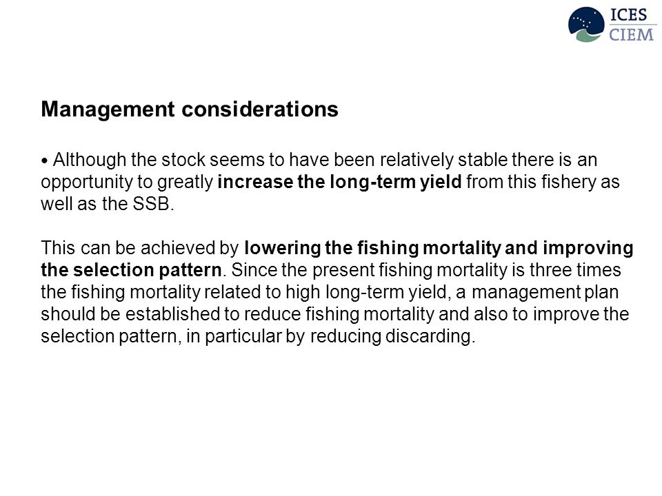 Management considerations Although the stock seems to have been relatively stable there is an opportunity to greatly increase the long-term yield from this fishery as well as the SSB.