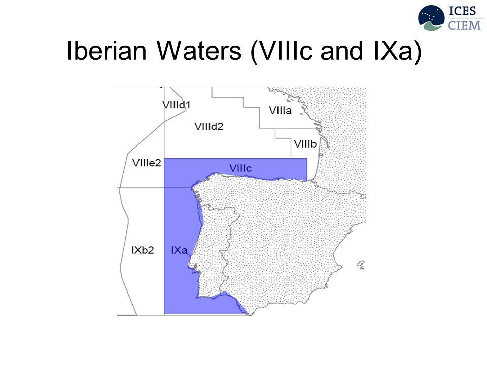 Iberian Waters (VIIIc and IXa)