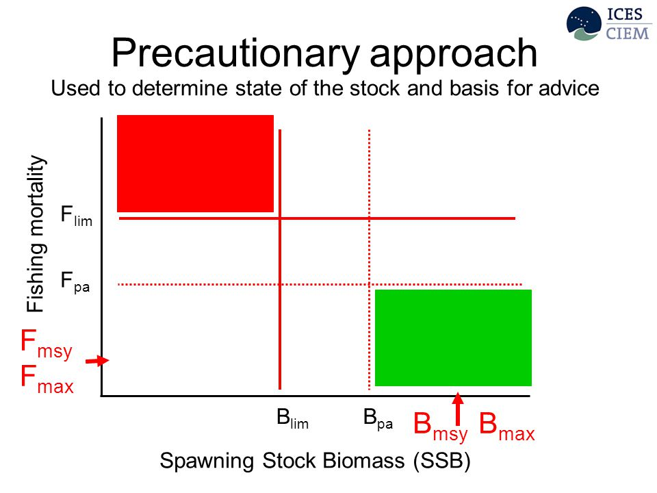 Precautionary approach F pa B lim F lim B pa Spawning Stock Biomass (SSB) Fishing mortality Used to determine state of the stock and basis for advice B msy B max F msy F max