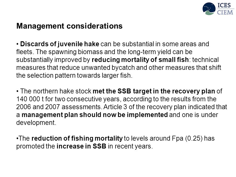 Management considerations Discards of juvenile hake can be substantial in some areas and fleets.