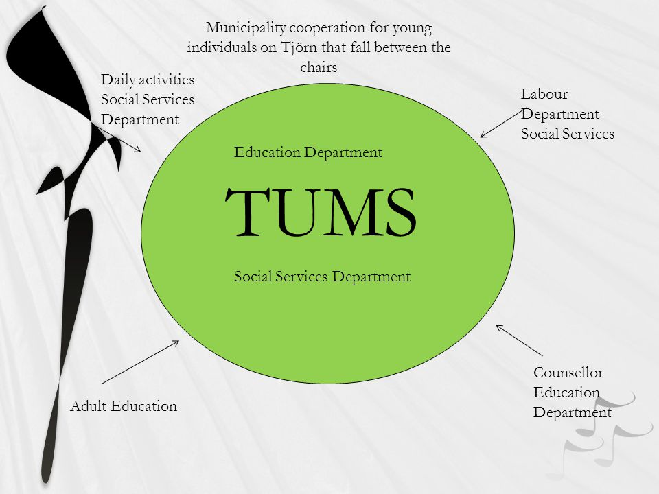 TUMS Education Department Social Services Department Labour Department Social Services Counsellor Education Department Daily activities Social Services Department Municipality cooperation for young individuals on Tjörn that fall between the chairs Adult Education