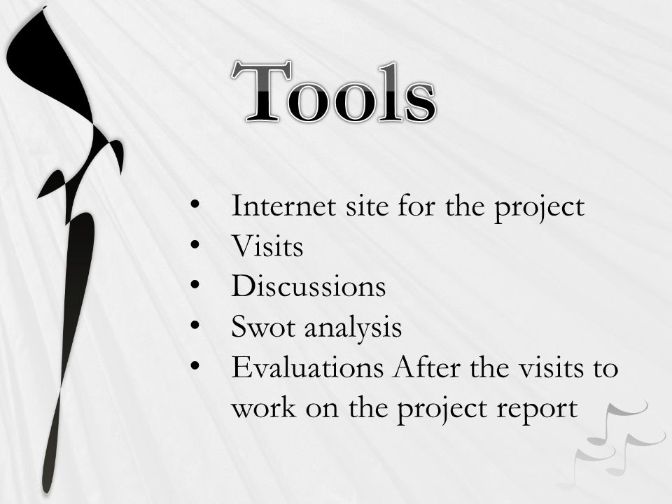 Internet site for the project Visits Discussions Swot analysis Evaluations After the visits to work on the project report