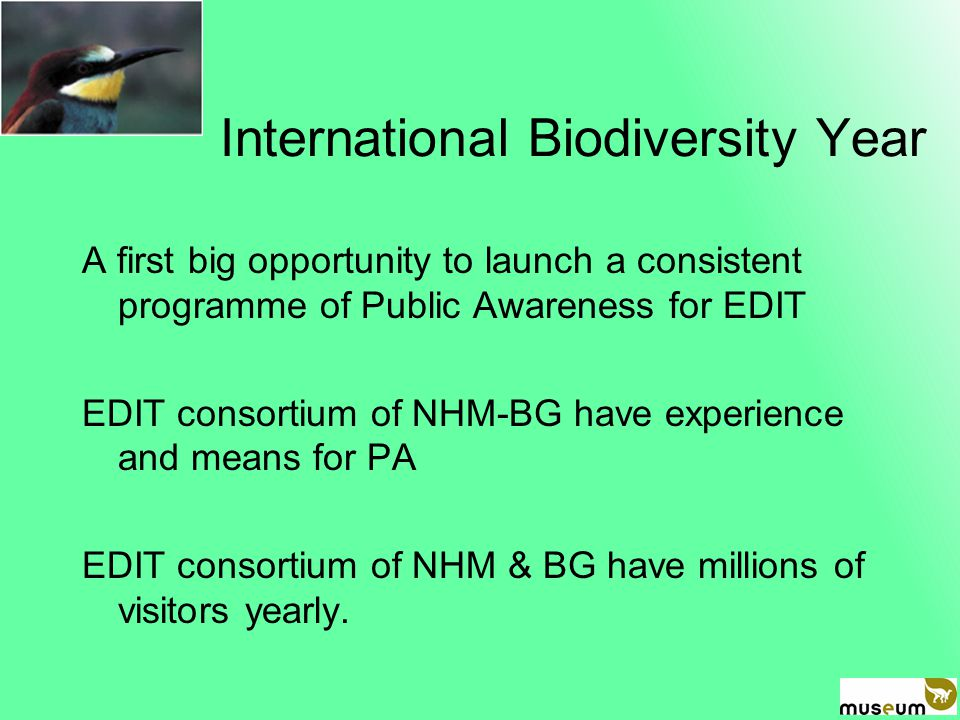 International Biodiversity Year A first big opportunity to launch a consistent programme of Public Awareness for EDIT EDIT consortium of NHM-BG have experience and means for PA EDIT consortium of NHM & BG have millions of visitors yearly.