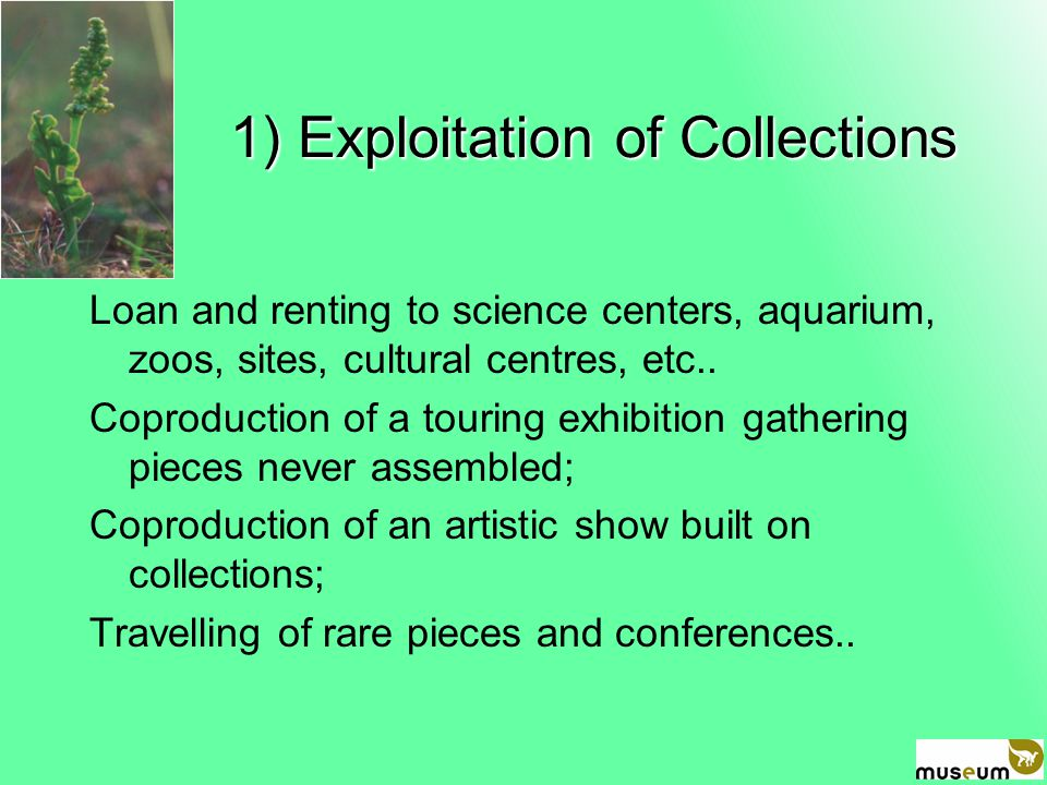 1) Exploitation of Collections 1) Exploitation of Collections Loan and renting to science centers, aquarium, zoos, sites, cultural centres, etc..