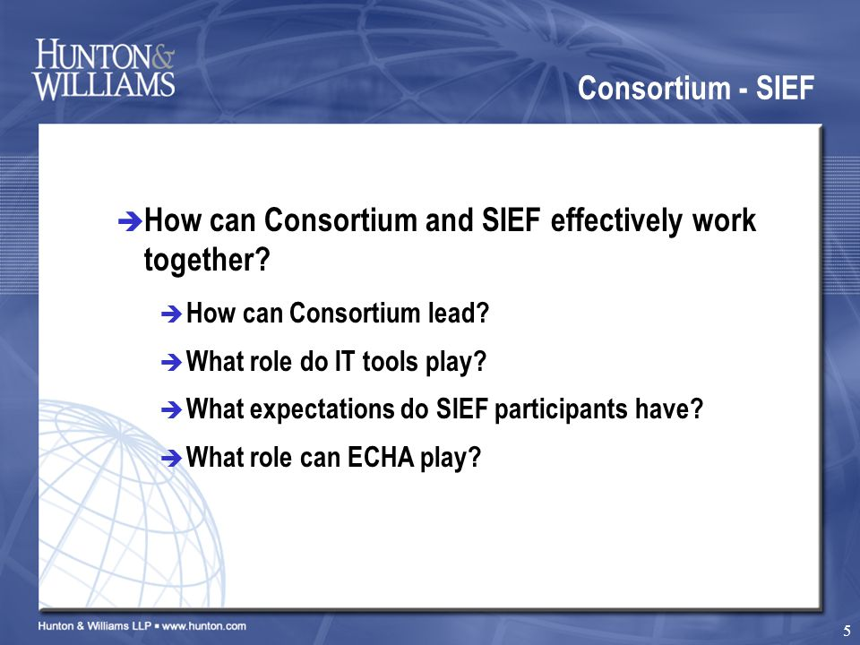 5 Consortium - SIEF  How can Consortium and SIEF effectively work together.