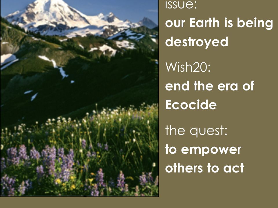 issue: our Earth is being destroyed Wish20: end the era of Ecocide the quest: to empower others to act