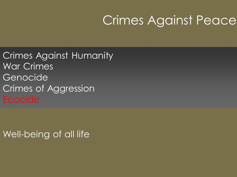Crimes Against Humanity War Crimes Genocide Crimes of Aggression Ecocide Well-being of all life Crimes Against Peace