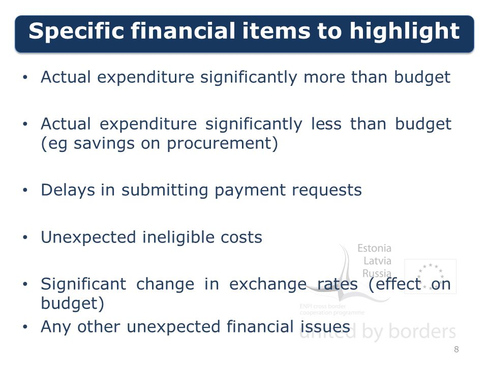 Specific financial items to highlight 8 Actual expenditure significantly more than budget Actual expenditure significantly less than budget (eg savings on procurement) Delays in submitting payment requests Unexpected ineligible costs Significant change in exchange rates (effect on budget) Any other unexpected financial issues