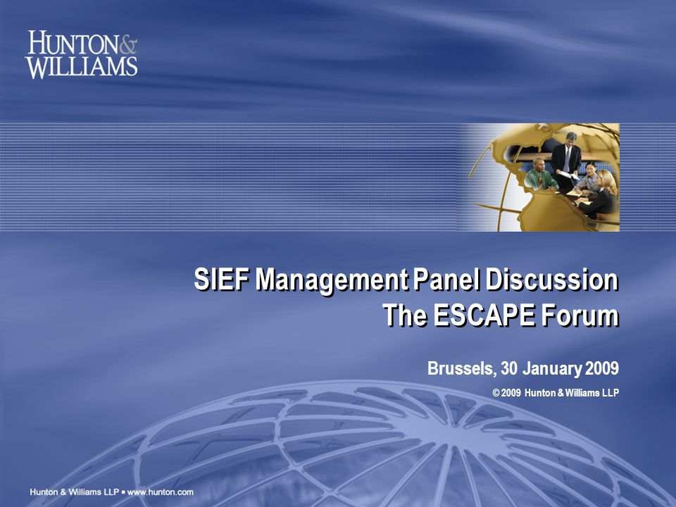 SIEF Management Panel Discussion The ESCAPE Forum Brussels, 30 January 2009 © 2009 Hunton & Williams LLP
