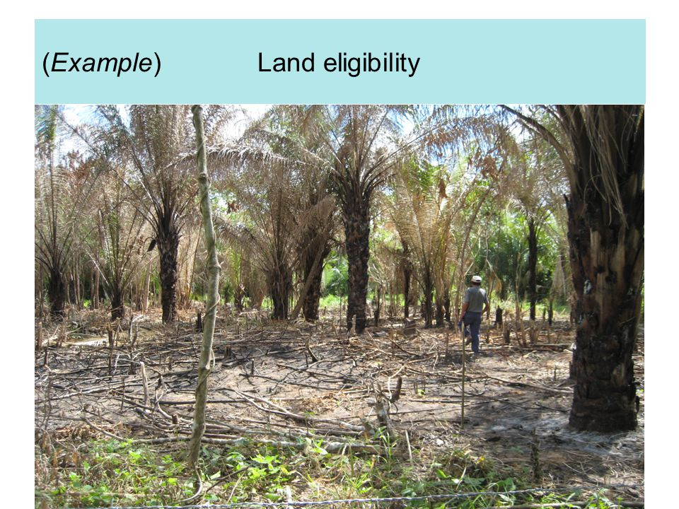 EMMER INTERNATIONAAL (Example) Land eligibility