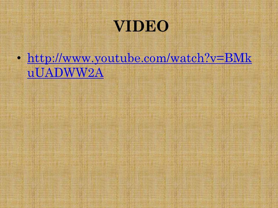 VIDEO http://www.youtube.com/watch v=BMk uUADWW2A http://www.youtube.com/watch v=BMk uUADWW2A