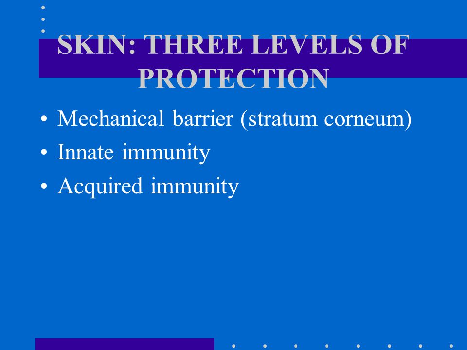 SKIN: THREE LEVELS OF PROTECTION Mechanical barrier (stratum corneum) Innate immunity Acquired immunity