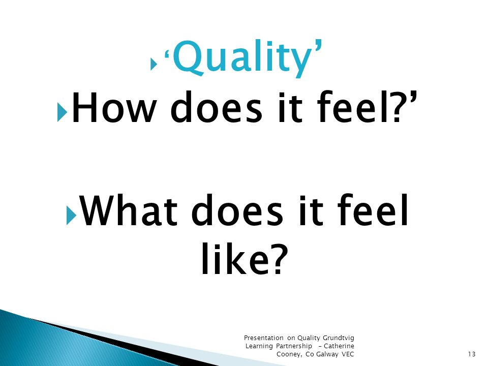 13  ' Quality'  How does it feel?'  What does it feel like? Presentation on Quality Grundtvig Learning Partnership - Catherine Cooney, Co Galway VE