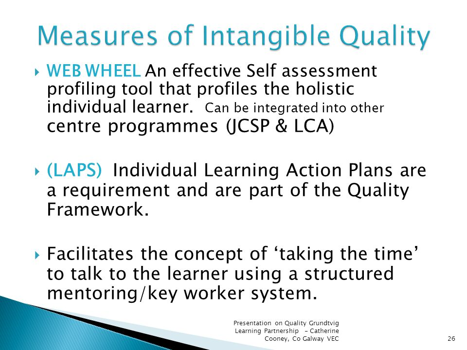  WEB WHEEL An effective Self assessment profiling tool that profiles the holistic individual learner. Can be integrated into other centre programmes