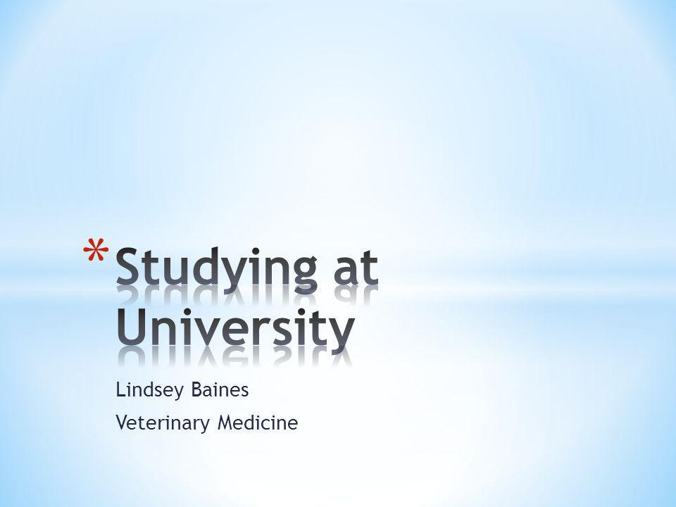 Lindsey Baines Veterinary Medicine