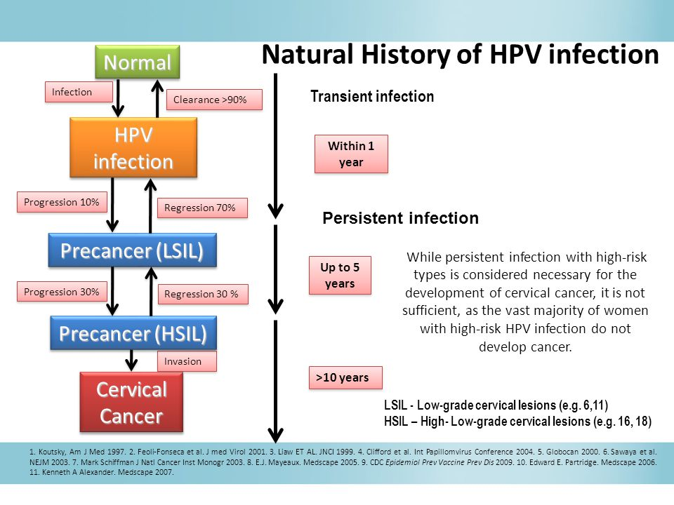 While persistent infection with high-risk types is considered necessary for the development of cervical cancer, it is not sufficient, as the vast majority of women with high-risk HPV infection do not develop cancer.
